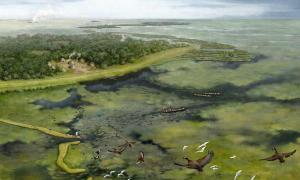 Illustration representing the way the rainforest landscape was shaped by ancient Amazonians around 3,500 years ago. Source: Kathryn Killackey / UCF