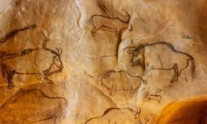 Ancient Cave Art Reveals Origin of Mysterious Bison Hybrid