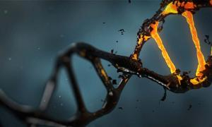 DNA molecule representation