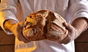 Traditional hand-made bread (gosphotodesign / Adobe Stock)