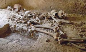 Remains of Ancient Maltese Islanders Discovered in Catacombs Beneath a School