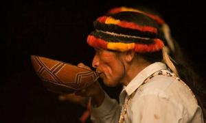 An indigenous person of Peru taking traditional medicine.