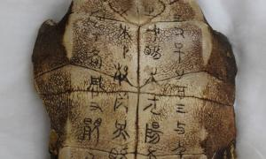 Undeciphered characters carved into an ancient tortoise shell.