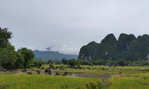 Limestone 'tower' karst region in the south of Sulawesi, where Leang Burung 2 is located.