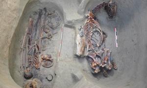 Ancient instrument Turkic warrior burial in Kazakhstan