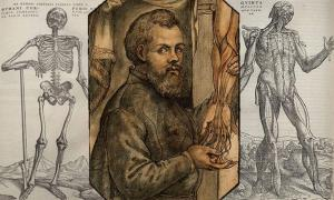 Portrait of Andreas Vesalius  flanked by his drawings of the skeletal and muscular systems