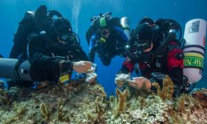 Antikythera team members Nikolas Giannoulakis, Theotokis Theodoulou, and Brendan Foley inspect small finds from the Shipwreck while decompressing after a dive to 50 m (165 feet).