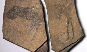 Apollo 11 Cave Stones, Namibia