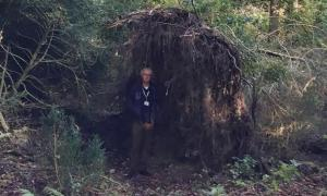 Archaeologist David Jacques demonstrates how a tree root system could function as a wall for Stone Age people.