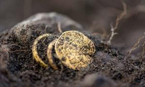 The gold coin and rings recently unearthed at Sandby Borg.