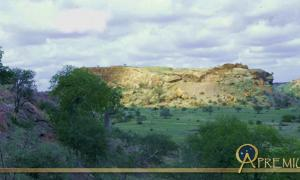 Golden Hill of Mapungubwe (Copyright University of Pretoria)