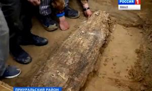 Ancient mummy unearthed from lost medieval civilization near Arctic