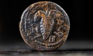 """Bar-Kokhba Rebellion coin inscribed with the words """"Return to Israel"""" with a cluster of grapes in the center. Source: (Koby Harati/City of David/Israel Antiquities Authority)"""