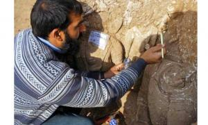 Excavations at Bhamala Archaeological Complex in Pakistan