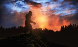 Does Bigfoot really exist?     Source: ginettigino / Adobe Stock.