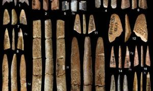Bone artifacts recovered from the Ma'anshan site.