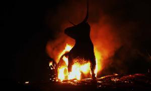 The Bull by Stuart Yeates.