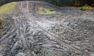 The vandalised burial mound, from Bronze Age Britain, churned up with tyre tracks shown in Wales, UK.         Source: Gwent Outdoor Centres