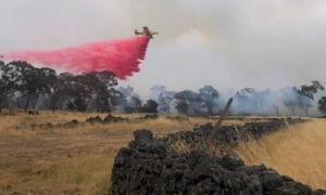 Fire services fought to save the Budj Bim site.