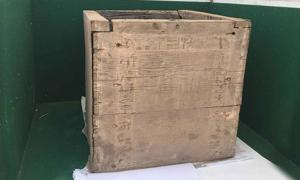 This is the 3,700-year-old box that contained the remains of the daughter of King Emnikamaw, a 13th Dynasty sovereign. You can just barely make out some of the hieroglyphics carved into the box in the photo