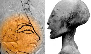 Limestone trial piece showing the head of Nefertiti; and detail of the mummy of the Younger Lady; design by Anand Balaji (Photo credit: Osama Shukir Muhammed Amin and G. Elliot Smith); Deriv.