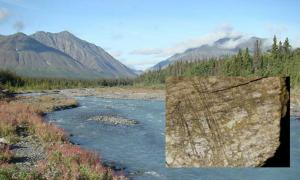 24,000-Year-Old Butchered Bones Found in Canada Change Known History of North America
