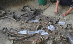 Archaeologist at uncovering bones at the Kalinga site.