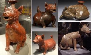 The Canine Figurines of Mesoamerican Colima