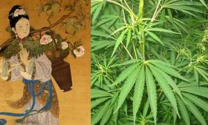 Magu, Goddess of Longevity and immortal hemp maiden