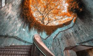 Spiral staircase of underground crossing in tunnel at Fort Canning Park, Singapore Source: (martinhosmat083/ Adobe Stock)