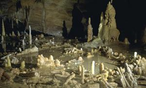 Deep in a Cave in France Neanderthals Constructed Mysterious Ring Structures 176,000 Years Ago