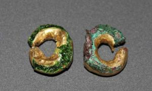 The gold hair rings found at Sculptor's Cave near Covesea, Moray.