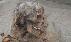 Skull of a child sacrifice at Huanchaquito-Las Llamas in Peru.