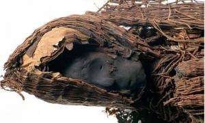 The head of an ancient Chinchorro mummy from northern Peru