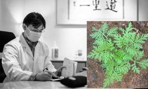 Ancient Chinese Remedy Could Wipe Out Tuberculosis