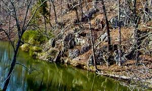 The Lost Tribe of Clover Hollow – Oldest Civilization in the World Found in Appalachian Mountains?