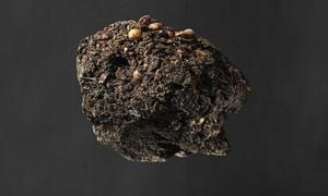 Archaeologists Match 300-Year-Old Clump of Fecal Matter to the Bishop that Made it