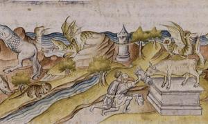 Creatures of the Land, Sea and Heavens: Ancient Beliefs in Animal Counterparts