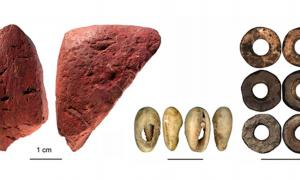 Selection of artifacts collected at Panga ya Saidi cave.