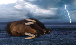 Deceased mammoth