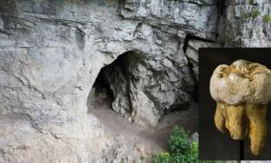 Denisova Cave, Russia. Inset: Denisovan molar discovered in Denisova Cave, Replica in Museum of Natural Sciences in Brussels, Belgium.