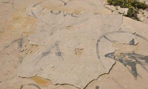 Vandalised site, showing fresh sand along the edges of the slab where it has been lifted and the holes left by the removal of two blocks in the centre. Babis Fassoulas, Author provided