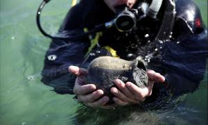 Divers from Tomsk State University say they have located another 'previously unknown' outpost of the ancient world.