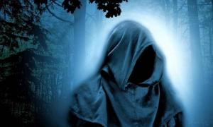 Representative image of a cloaked druid in a forest.