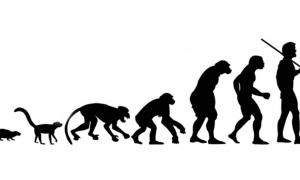An illustration depicting the possible path of human evolution.