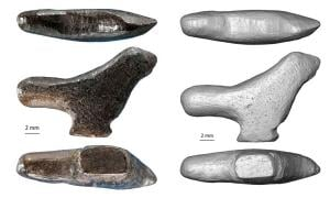 The bird figurine is the oldest-known sculpture to be found in East Asia.         Source: Francesco d'Errico/Luc Doyon / PLOS ONE