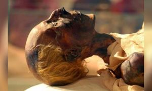 The mummified body of Egyptian Pharaoh Ramses the Great.