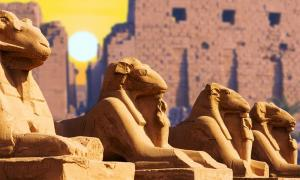 Four ancient Egyptian sphinxes pictured at the Temple of Karnak in Luxor.     Source: Anton / Adobe stock