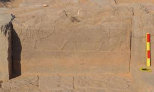 Extensive Engraved Ramp Discovered Connecting an Elite Tomb to the Bank of the Nile