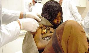 Llullaillaco mummy being examined by scientists (CC by 2.0)